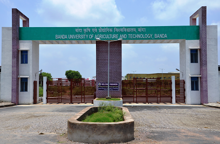 Banda University of Agriculture and Technology